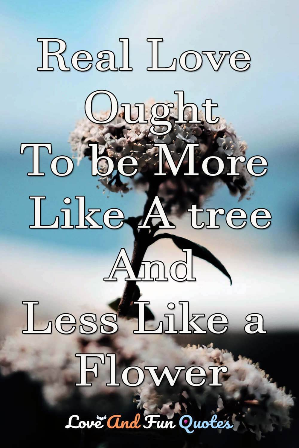 Real-love-ought-to-be-more-like-a-tree-and-less-like-a-flower