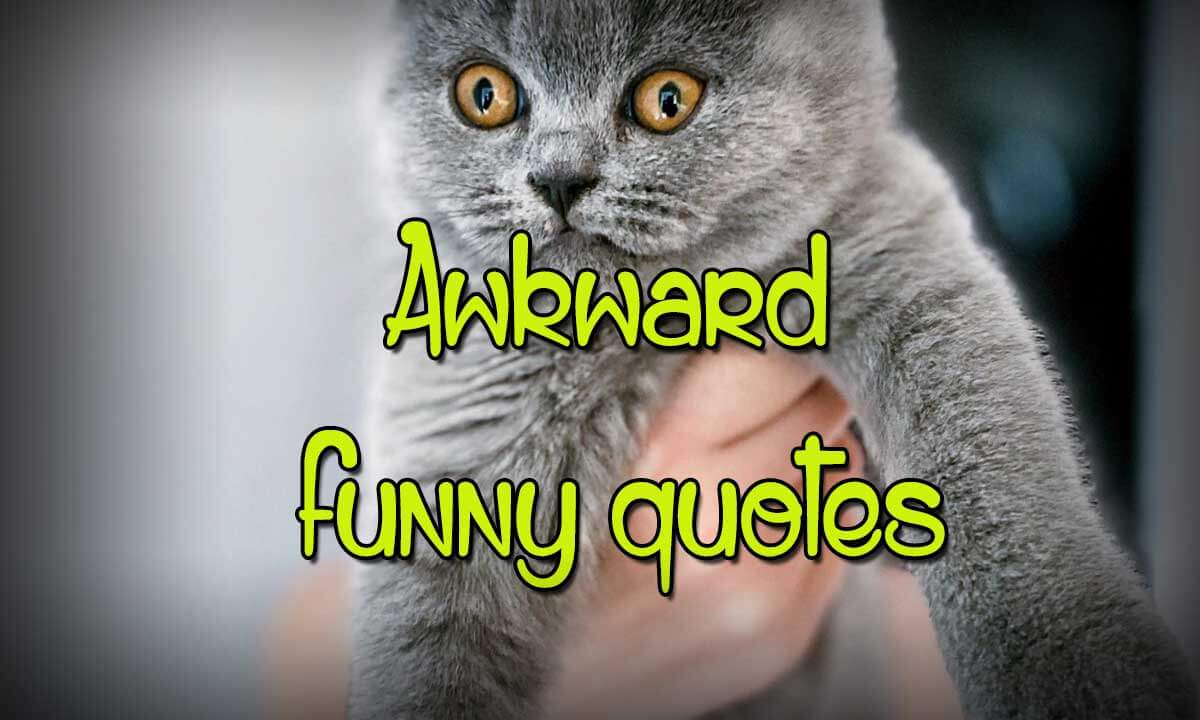 awkward funny quotes